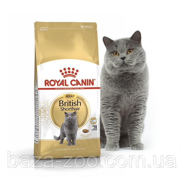 Сухой корм Royal Canin British Adult для британских кошек 10 кг