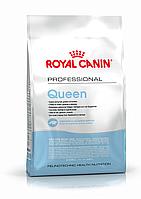 Сухой корм Royal Canin Queen для кошек в период течки, беременности и лактации 4кг