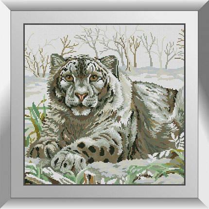 31360 Снежный барс Набор алмазной живописи, фото 2