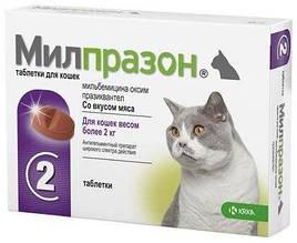 Антигельминтные таблетки KRKA Милпразон для кошек более 2 кг, 1 шт., Поштучно