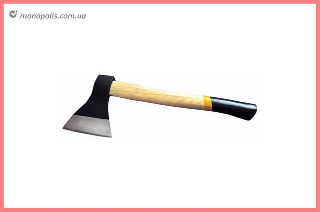 Топор Mastertool - 1000 г, ручка деревянная, фото 2