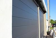 Гаражные секционные ворота DoorHan 2500 на 1900 (цвет сатингрей), фото 2
