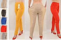 Женские цветние однот брюки дайвинг 65% хлопок в больших размерах 2XL\3XL, 3XL\4XL Польша