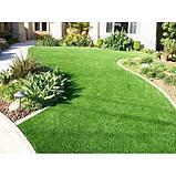 Насіння газонної трави Supreme 10 кг, фото 2