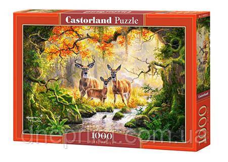 "Пазл 1000 ел. ""Castorland"" (Польща) / Королівська родина"