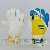 Перчатки вратарские FB-0187-4 UKRAINEN