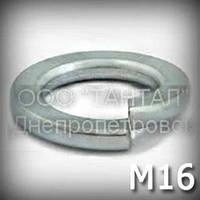 Шайба 16 DIN 127 (ГОСТ 6402-70) пружинная оцинкованная