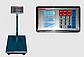 Электронные торговые весы ACS 300-350 кг 40*50 Fold Domotec 6V с железной головой, фото 3
