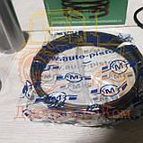 Группа поршневая ЮМЗ МТЗ КАМА (производство Россия) | Поршнекомплект Д 240 Д 65, фото 4