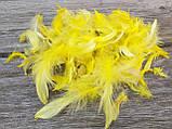 Перья декоративные цветные, 150 шт/уп (4-5 гр), 30 грн, фото 6