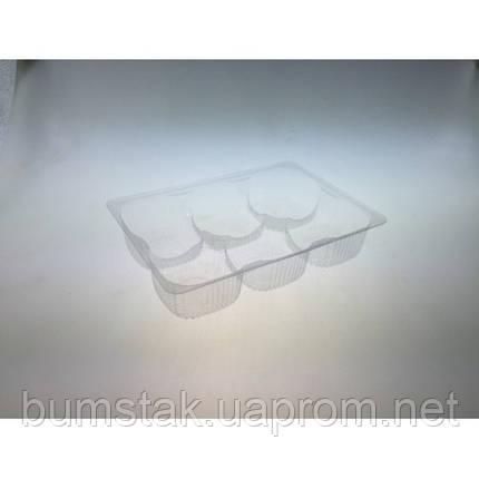 Универсальная упаковка IT-506 / 203*140*42 / 850 мл. коррекс для печенья, фото 2