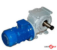 Червячный мотор-редуктор МЧ-100 на 18 об./мин., фото 1