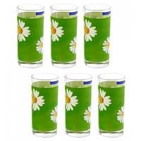 Набір склянок Luminarc Aime Paquerette 270 мл 6 шт G1970