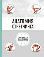 Книга Анатомия стретчинга. Автор - Анатомия спорта (Эксмо)
