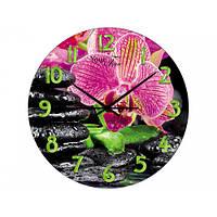 Часы настенные 28см Розовая орхидея S&T 01-155
