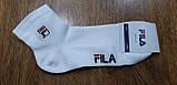 """Чоловічі шкарпетки(сітка) в стилі """"FILA W"""" Туреччина 41-45,середні, фото 3"""