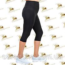 Бриджі жіночі класичні великих розмірів від 50 до 58