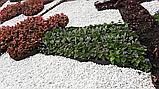 Садовий бордюр 10 см х 15 м, пластик, фото 6