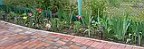 Садовий бордюр 10 см х 15 м, пластик, фото 10