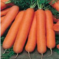 Стелла F1 семена моркови Нантская Agri Saaten 25 000 семян