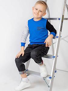 Комбинированная кофта для мальчика с рукавами различного цвета 10009