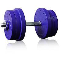 Гантели разборные ударопрочные Active Sports Titan 2 шт по 15 кг