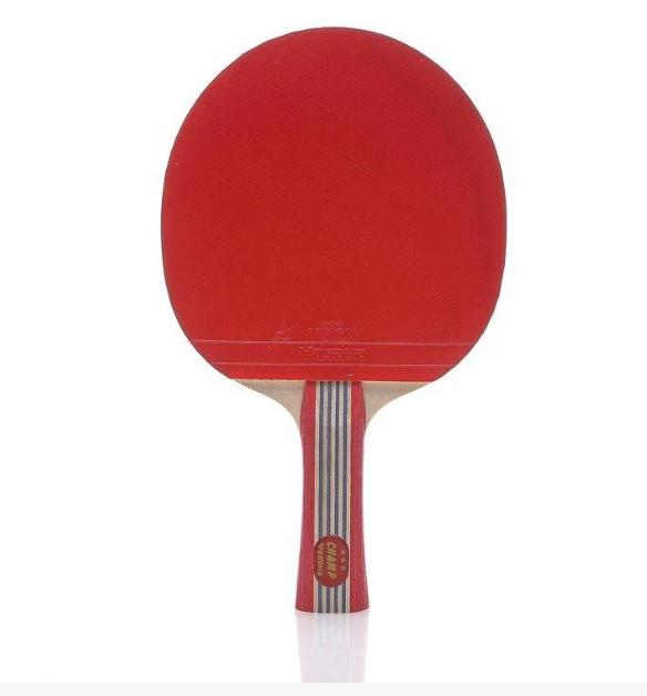 Ракетка для настольного тенниса Yasaka Racket Champ