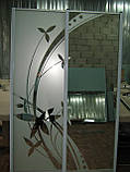 Двери для шкафа-купе пескоструй, фото 2