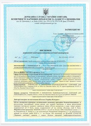 Антисептик для рук Этилсепт с дозатором 0,5л. Сертифікат!, фото 2