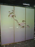 Системы раздвежные с аракаловой пленкой, матовая, глянец, фото 1