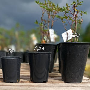 Пластикові горщики (технічні контейнери) для рослин
