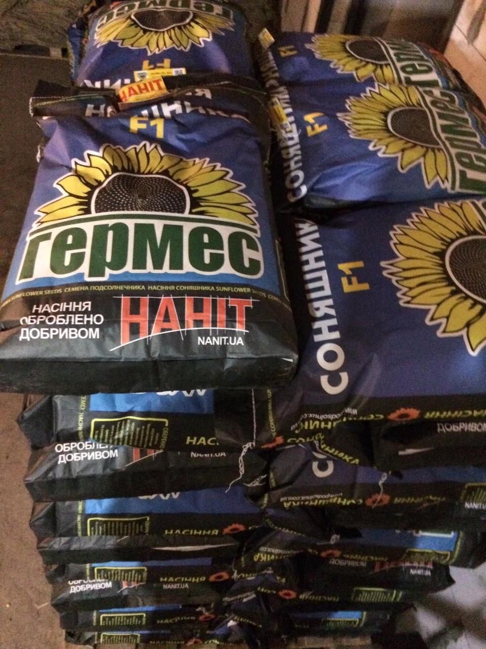 Семена подсолнуха Меркурий ИМИ под Евро Лайтинг/насіння соняшника Меркурій