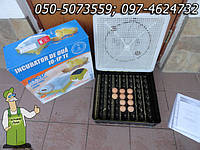 Инкубатор  Боротто от фирмы Аргис на 56 яиц