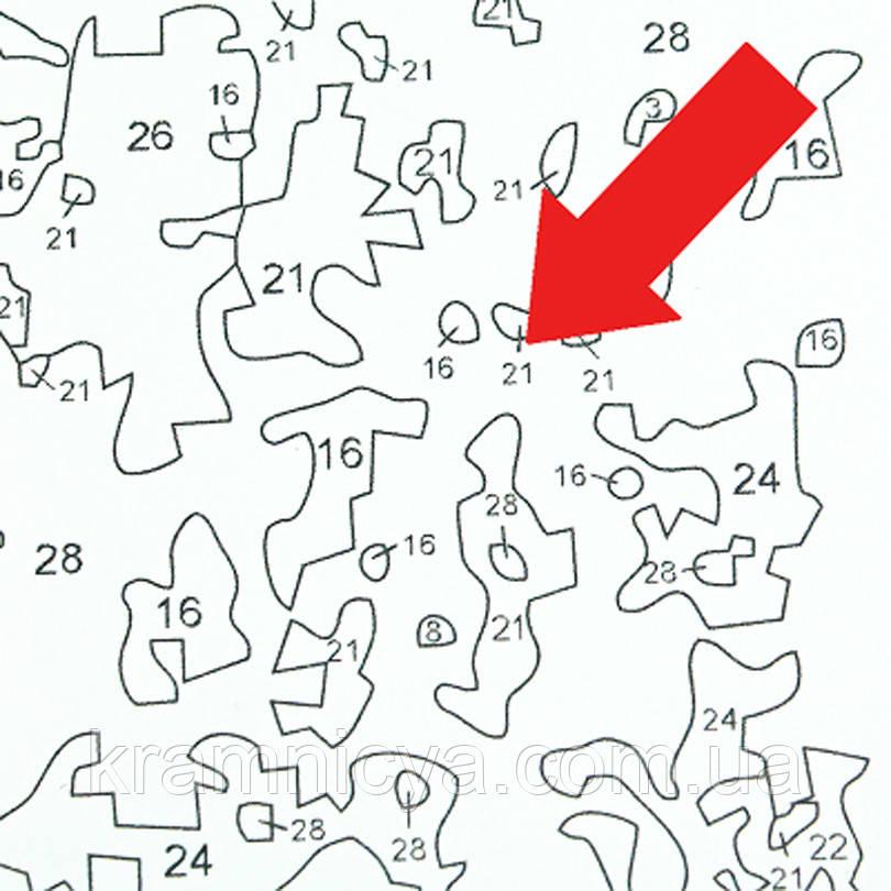 """Раскраска по номерам """"Яхты"""", 39х28,5см.: купить в интернет ..."""