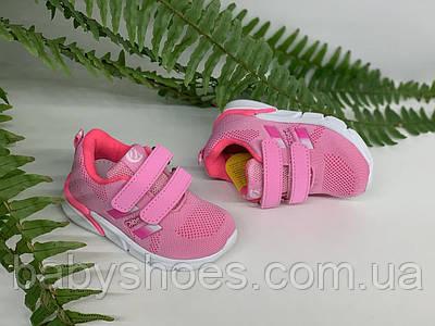 Кроссовки для девочки Clibee Польша р. 21-25,  КД-521