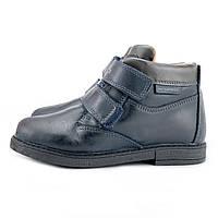 Осенние ботинки на мальчика Geox Джеокс р 27