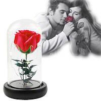 Роза в колбе с LED подсветкой UKC подарок ночник 16 см красная