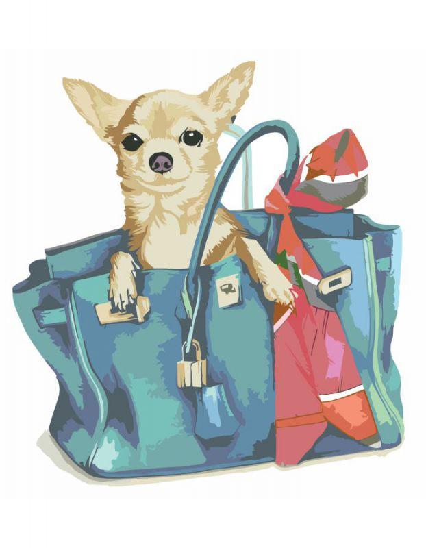 Картина по номерам. Rosa  Собачка в женской сумочке  35х45см