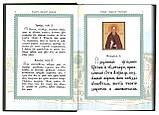 Акафист преподобному и богоносному Александру игумену, Свирскому чудотворцу, фото 4