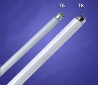 Светодиодная лампа Т5, 60 см 9Вт цоколь G5, холодный белый (6500 К)