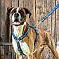 Шлея для собак, черно-белая Fancy Dress Hound Dog (Рогз) M: 32-52 см, фото 8