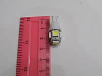Автомобильная светодиодная лампа для подсветки номера, габаритов  T10-5SMD-5050-12V (пр-во Китай)