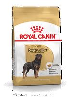 Royal Canin Rottweiler Adult 12кг - корм для взрослых собак породы ротвейлер