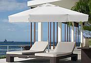 Зонт профессиональный The Umbrella House 300/8 см AVACADO, фото 4