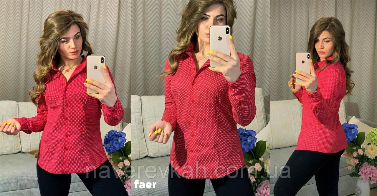 Женская летняя классическая рубашка на пуговицах стрейч коттон 42 44 46 48 красная зеленая с белым горошком