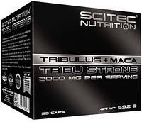 Tribulus + Maca Tribu Strong Scitec Nutrition (90 капс.)