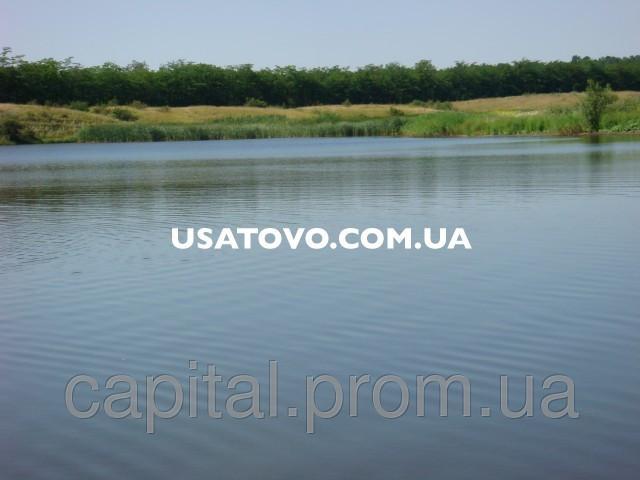 Продажи водоёмов зеркалом от 30 гектаров в Одесской области под заказ