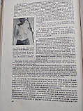 Восстановительная хирургия 2 тома. Н.А.Богораз. Медгиз. 1948год. 1949 год, фото 9