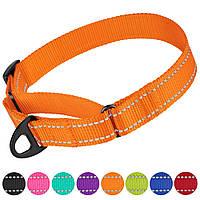 Ошейник для собак Мартингейл   нейлоновый со Светоотражающий оранжевый