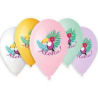 """Воздушные шары  Тукан Aloha 14"""" (35 см), 50 штук в упаковке"""
